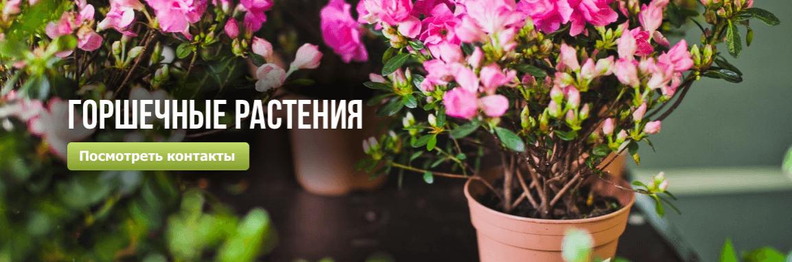 упаковка для цветов екатеринбург оптом москва